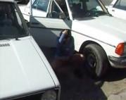 Hausfrau pisst zwischen die Autos