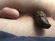 Meine geile Kackwurst