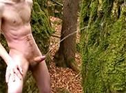 Schwuler pisst Baum an